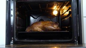 Große Ente gebacken im Ofen stock footage