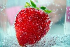 Große Erdbeeren in Blasen Lizenzfreie Stockfotos