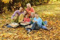 Große Familie auf einem Picknick Stockbilder