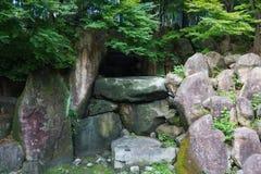 Große Felsen unter Bäumen in wildem Stockbilder