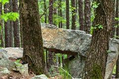 Große Felsenplatte, die auf einem anderen Felsen in der Waldfläche stillsteht Stockfotos