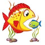 Große Fische der netten Karikatur essen kleine Fische Die goldene Taste oder Erreichen für den Himmel zum Eigenheimbesitze Lizenzfreies Stockfoto