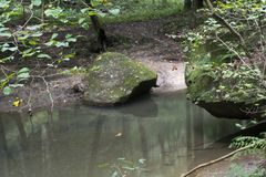Große Flusssteine Wo nahe bei Strom lizenzfreie stockfotos