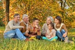 Große glückliche Familie lizenzfreies stockbild