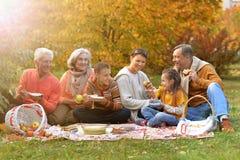 Große glückliche Familie auf Picknick lizenzfreie stockfotografie