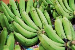 große grüne Banane Stockbild
