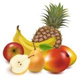Große Gruppe exotische Frucht. Lizenzfreies Stockbild