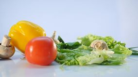 Große Gruppe Gemüse, das auf weißen Hintergrund fällt stock video footage