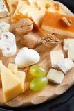 Große Gruppe Käse Lizenzfreies Stockbild