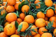 Große Gruppe Orangen Stockbild