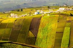 Große Höhe-Landwirtschaft Lizenzfreie Stockfotos