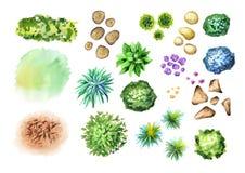 Große Handgezeichnete Gartenpflanzen eingestellt Elemente des Landschaftsdesigns Lizenzfreie Stockfotos