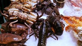 Große Hummer der beweglichen Garnelen der Meeresfrüchte und Krabben auf dem Gegenmarkt, Meeresfrüchte im Markt La Boqueria in Bar stock footage