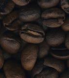Große Kaffeebohnen schließen oben stockbilder