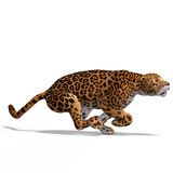 Große Katze-Jaguar lizenzfreie abbildung