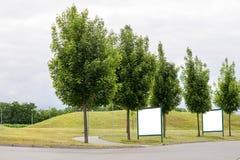 Große leere Anschlagtafeln entlang einer Straße mit Bäumen, Fahnen mit Raum, Ihren eigenen Text zu addieren Stockfotos