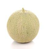 Große Melone auf weißem Hintergrund Lizenzfreie Stockbilder