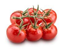 Große Niederlassung der frischen roten Tomate mit grünen Blättern Stockfotos