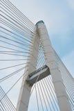 Große Obukhovsky-Brücke (Kabel-geblieben) Stockfotografie