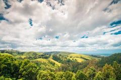Große Ozean-Straßengrünlandschaft, Victoria, Australien Lizenzfreie Stockfotografie