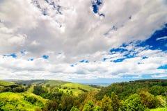 Große Ozean-Straßenlandschaft, Victoria, Australien Stockfotografie