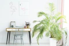 Große Palme nahe bei Schreibtisch stockfotografie