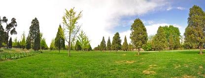Große panoramische Ansicht eines Gartens im Frühjahr Stockbilder