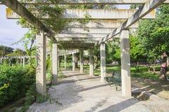 Große Pergola mit hängenden Kriechpflanzen in einem Park Lizenzfreie Stockbilder