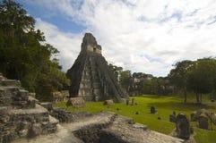Große Piazza tikal Guatemala Stockfoto