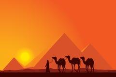 Große Pyramiden Ägyptens mit Kamelwohnwagen auf Sonnenunterganghintergrund Lizenzfreie Stockfotografie
