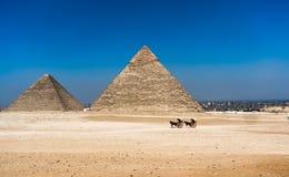 Große Pyramiden in Giseh-Tal und -reiter auf Pferd Egypt lizenzfreie stockfotografie