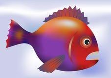 Große räuberische Fische Lizenzfreies Stockfoto