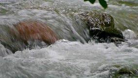 Große rauchige Berge Nationalpark, Tennessee, USA stock footage
