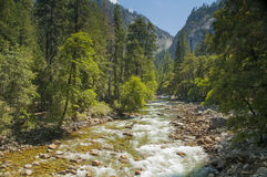 Große rauchige Berge Nationalpark, Tennessee, USA Lizenzfreie Stockfotos