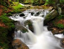 Große rauchige Berge Nationalpark, Tennessee, USA Lizenzfreies Stockbild