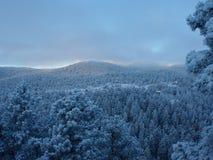 Große rauchige Berge Nationalpark, Tennessee, USA Stockbilder