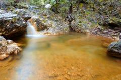 Große rauchige Berge Nationalpark, Tennessee, USA Stockfotos