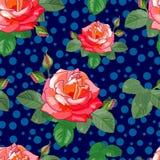 Große Rosen auf einem blauen Hintergrund Lizenzfreie Stockfotografie