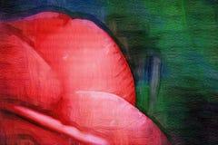 Große rote rosafarbene Blumenblätter auf einem grünen Hintergrund stockbild
