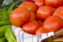 Große rote Tomaten Lizenzfreie Stockbilder