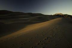 Große Sanddünen bei Sonnenuntergang Lizenzfreies Stockbild