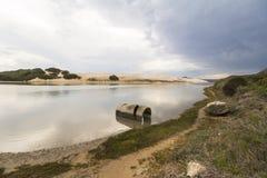 Große Sanddünen im waldigen Kapabschnitt von Addo Elephant Park Stockfoto