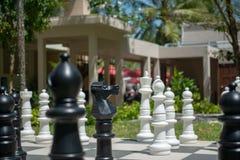 Große Schachbrettstücke stockfoto