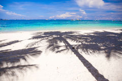 Große SchattenPalmen auf dem weißen Sand setzen auf den Strand Lizenzfreie Stockbilder