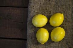 Große schauende Zitronenmalereien für Salate und Soßen in der Küche, natürliche organische Zitronenbilder des c-Vitaminspeichers, Stockfoto