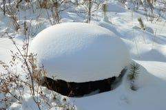 Große Schneekappe auf einem Kiefernstumpf Winterlandschaft im Wald Lizenzfreie Stockfotos