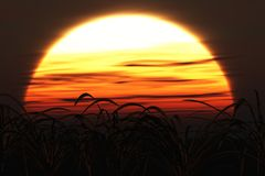 Große Sonne am Sonnenuntergang Stockbilder