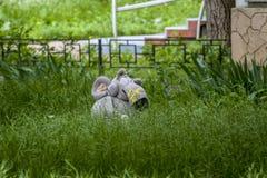 Große Spielzeugmaus im Gras wenig Maus in den Farben Spielwaren nahe dem Haus Spielwaren im Garten wenig Maus und Blume Gr?nes Gr lizenzfreie stockfotos