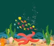 Große Starfish unter dem Meer Stockbild