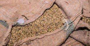 Große Taschen Bohnen eines Rohkaffees lizenzfreie stockfotografie
